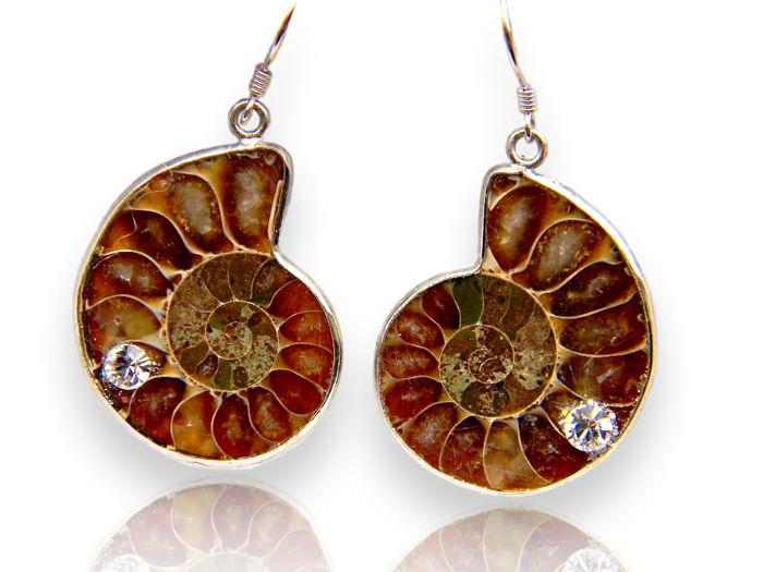 DSCN1180 Fossil Earrings clear crystal #2_clipped_rev_1